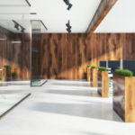 Is Biophilic Design Right For Your Office Remodel?